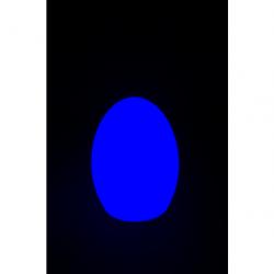 LED-EGG