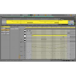 Ableton Live 11 Standard (download version)